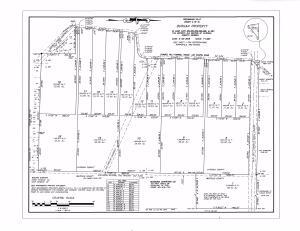 Court Ordered 417.88 Acres+/-  Real Estate Auction