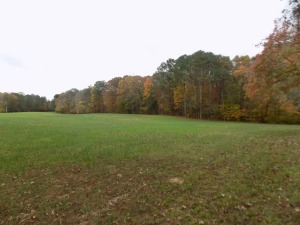 27+ Acres * Wooded & Open * Shop Building * Tracts or Whole