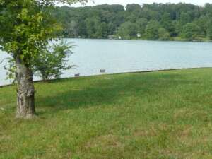 Property 109-Lot on Watts Bar Lake, Spring City, TN