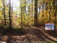 Online Only Real Estate Auction1.81 Acres +- Residential LotBrookwood Lane – Oak Park Subdivision – LaFayette, GA. Walker Co.Bid Opens Nov. 25th & Bid Ends Dec. 10thLocation:  From US Hwy 27 Bypass, Go West on Werthen St., then Left on Meadowbrook, then r - 2