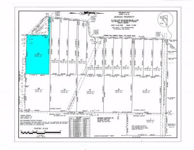 Tract 19 is 30.85+/- Acres of the 417.88+/- Burgan Property